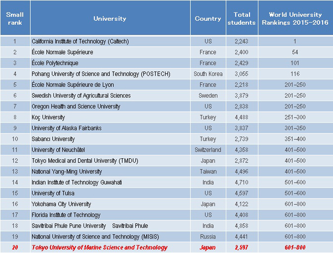 top colleges for english major best ts websites