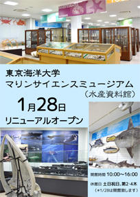 Museum of Marine Science Tokyo University of Marine Science and Technology